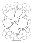 Nature Adult Coloring Pages